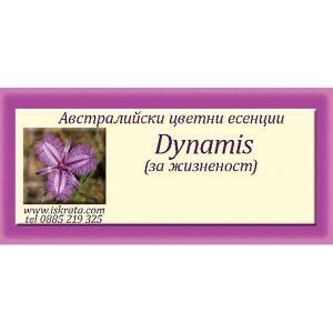 комбинация Dynamis Essence – За жизненост