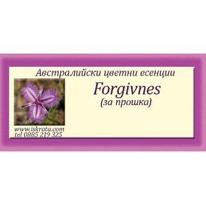 За прошка