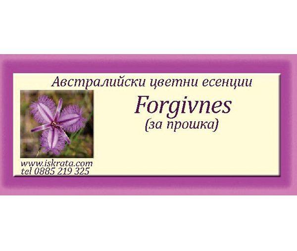 Forgiveness- За прошка