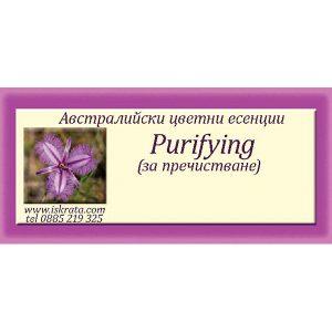Purifying Essence – За пречистване и лекота