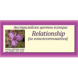 Relationship Essence – За взаимоотношенията